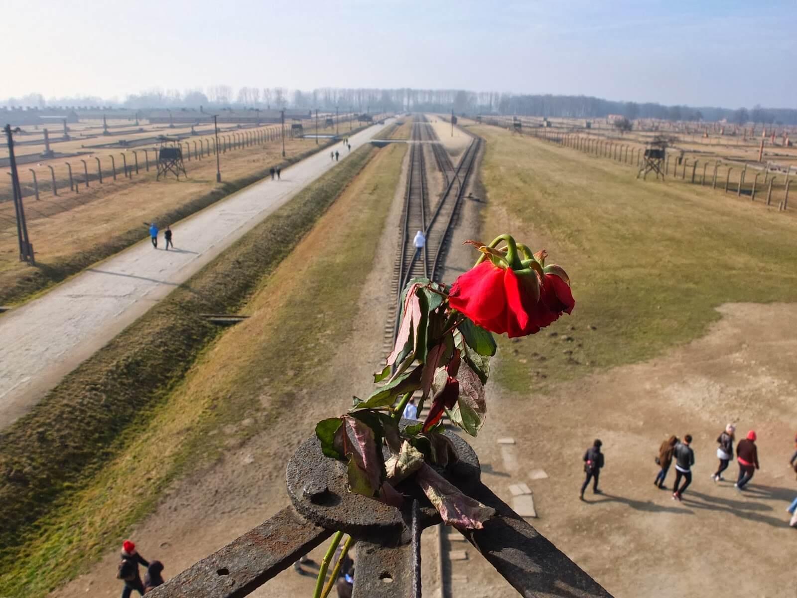 Auschwitz Concentration Camp Tour - Auschwitz I & Auschwitz II-Birkenau.