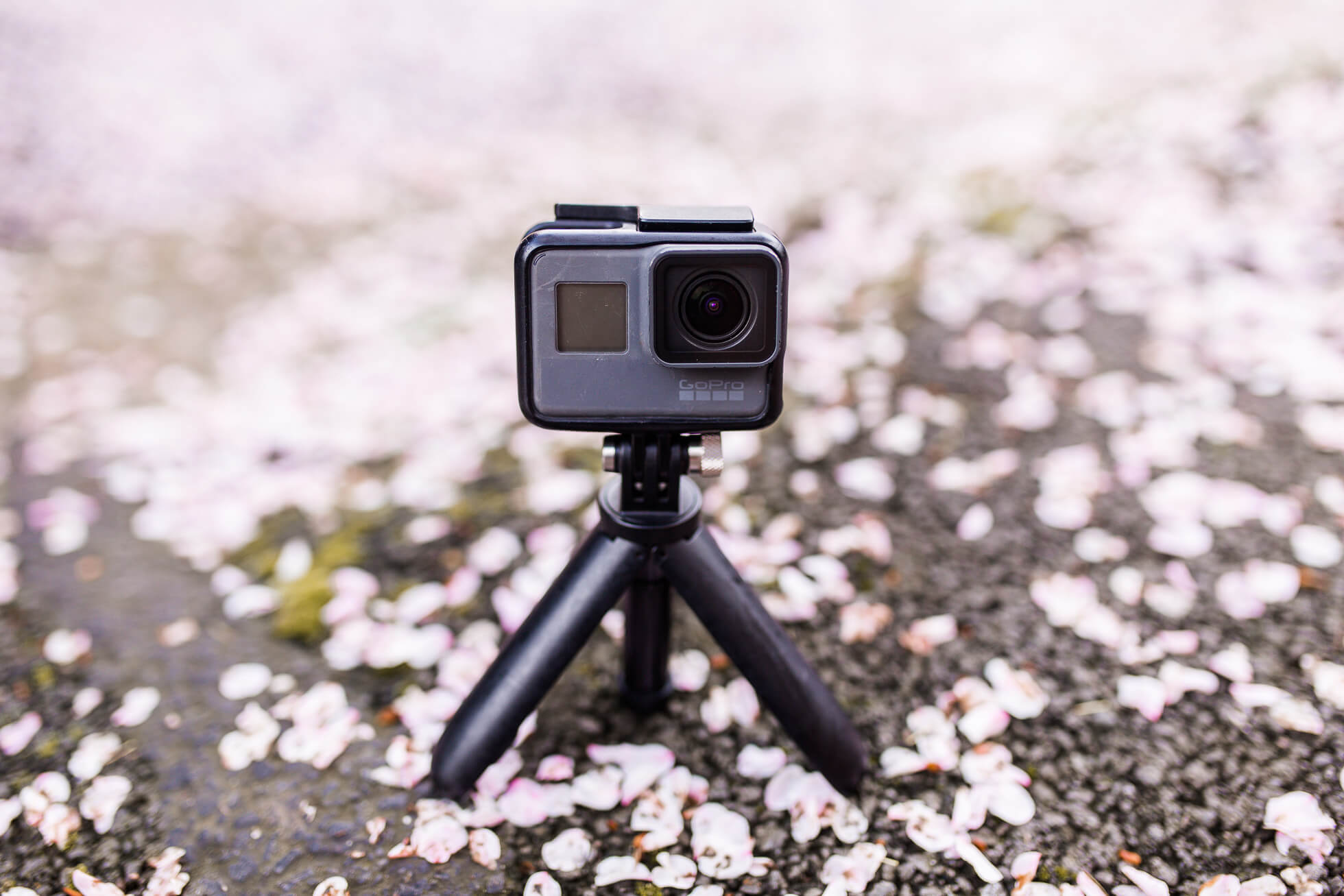 'Getting the shot'- My top tips for shooting with a GoPro   Where's Mollie? A travel and adventure lifestyle blog
