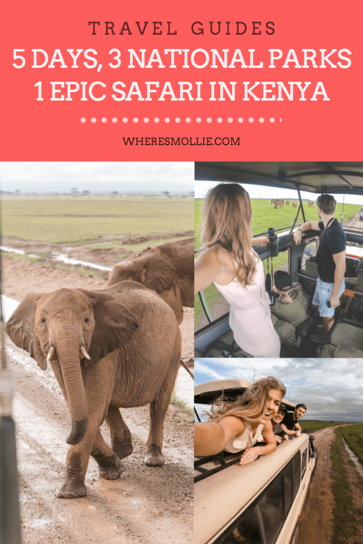 Five days, three national parks, one epic safari in Kenya| Where's Mollie? A travel and adventure lifestyle blog