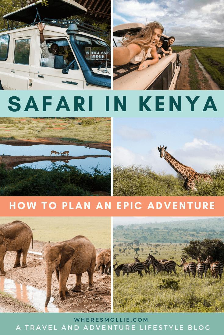 How to plan your safari in Kenya