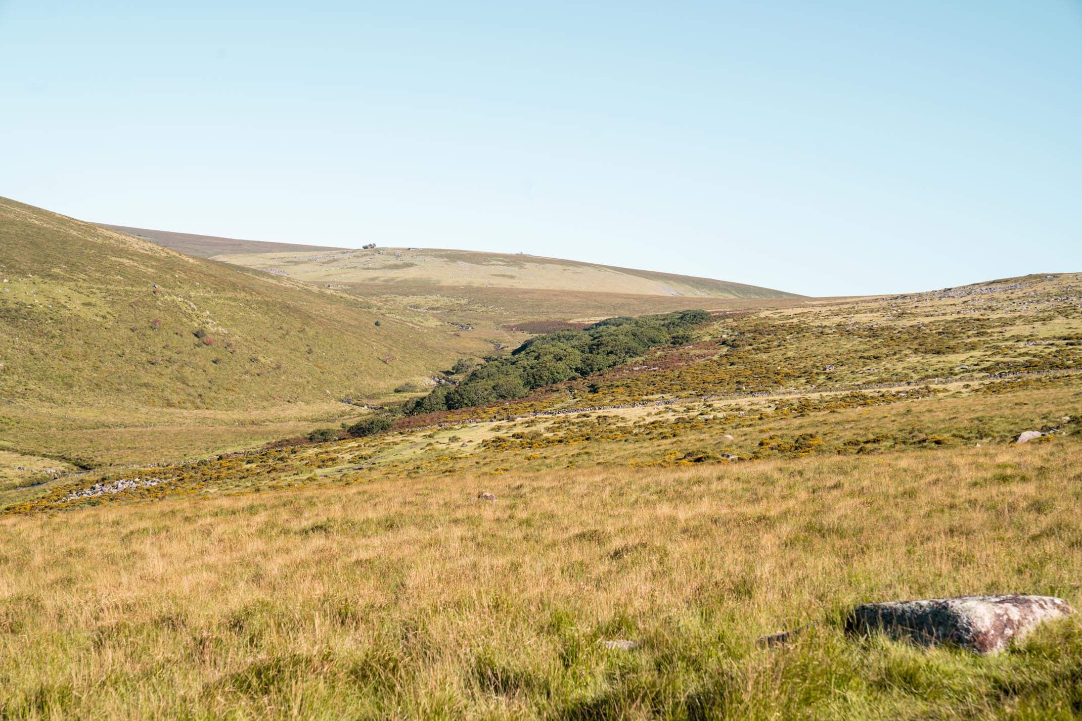 Wistman's Wood: A guide to exploring Dartmoor National Park, Devon