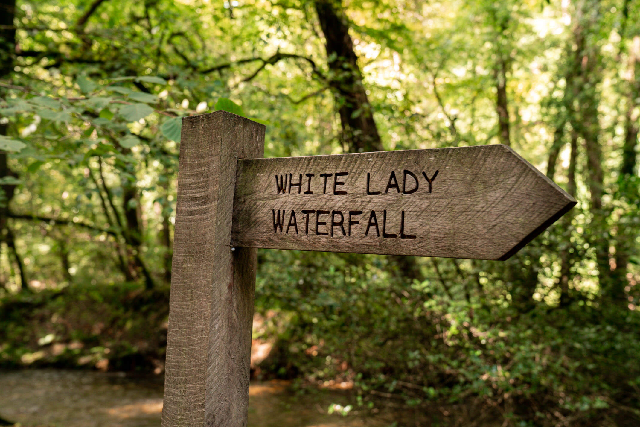 White Lady Waterfall: A guide to exploring Dartmoor National Park, Devon