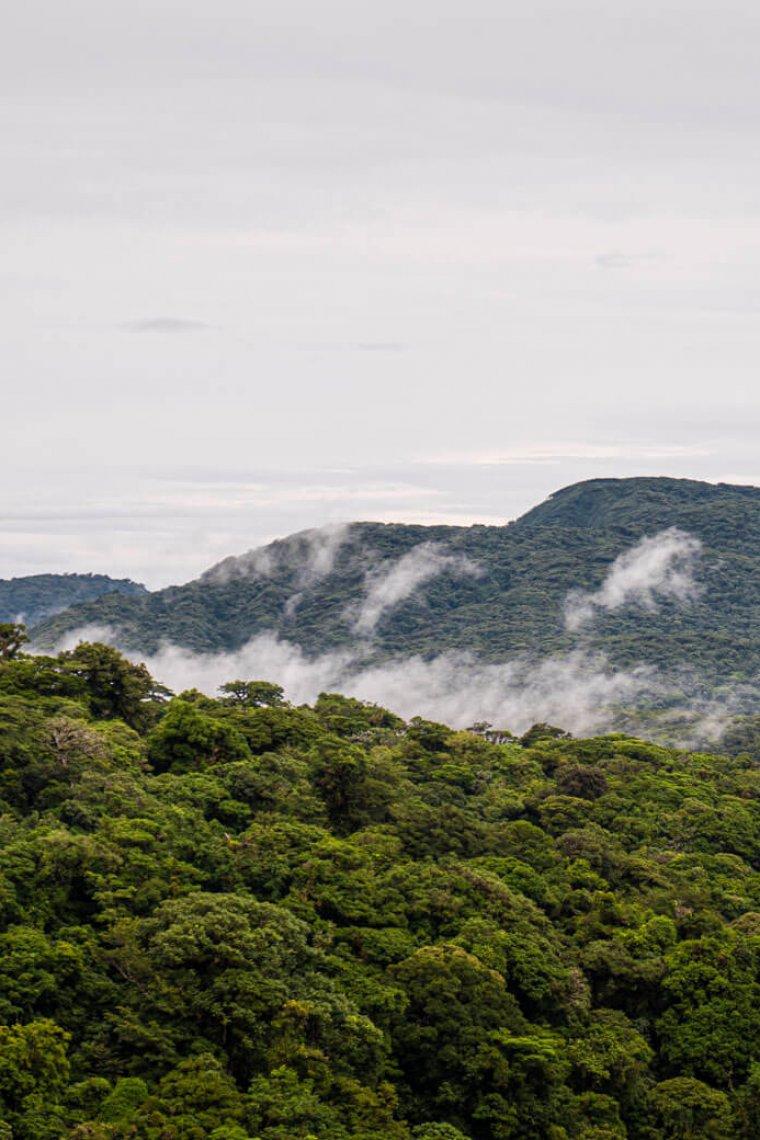 A guide to Monteverde, Costa Rica