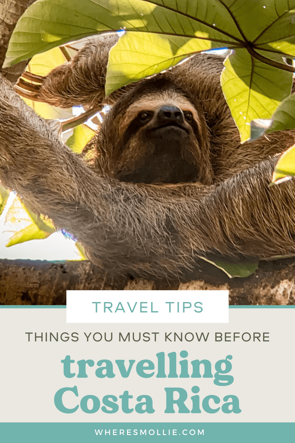 Top tips for travelling in Costa Rica